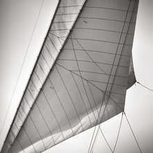 Sails of Rowdy